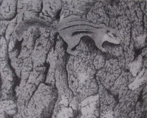 """""""A heightened Awareness"""" pencil drawing"""